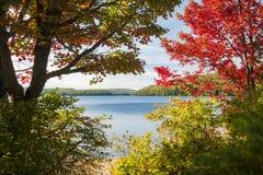 Höst lake Royaltyfria Bilder