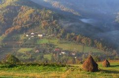 Höst nära Bajina Basta, västra Serbien Royaltyfri Bild