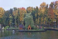 Höst nära sjön Royaltyfri Fotografi