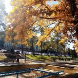 Höst Nedgångnaturplats höstlig härlig park royaltyfri bild