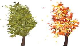 Höst- och sommargrungeträd i vinden vektor Arkivfoto