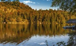 Höst på Alpsee Fotografering för Bildbyråer