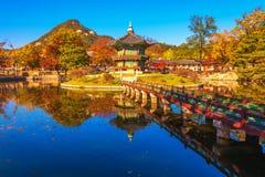 Höst på den Gyeongbokgung slotten i seoul, Korea Arkivfoton