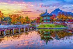 Höst på den Gyeongbokgung slotten i seoul, Korea Arkivfoto