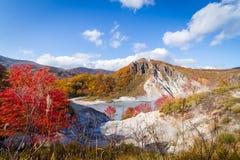 Höst på den Jigokudani helvetedalen, Hokkaido, Japan Royaltyfria Bilder