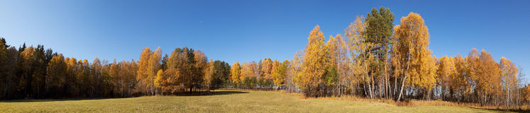 Höst panoramautsikter Arkivfoton