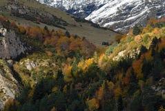 höst pyrenees Arkivbild