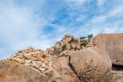 Höst Seoraksan nationalpark, Sydkorea Arkivbilder