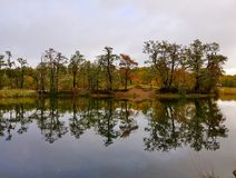 Höst sjö i Sverige Arkivbilder