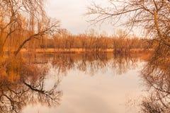 Höst sjö med en träpir och en härlig reflexion arkivfoto