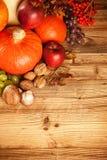 Höst skördad frukt och grönsak på trä Fotografering för Bildbyråer