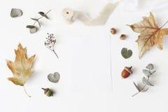 Höst utformat materielfoto För brevpappermodell för kvinnligt bröllop skrivbords- plats med det tomma hälsningkortet, torr eukaly arkivfoto