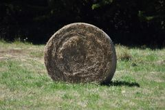 Höstack i ett fält i Brittany, Frankrike royaltyfria foton