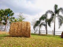Höstack i lantgården, åkerbrukt fältlandskap royaltyfri foto