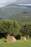 Höstack i pyrenean bygd, Aude i Frankrike Arkivfoto
