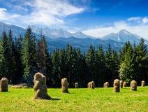 Höstack nära skog på en äng i Tatras Arkivfoton