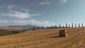 Höstack och fält nära San Quirico D ` Orcia, Italien arkivfoto