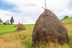Höstack på ängen i Carpathian berg Royaltyfri Bild