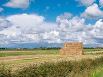 Höstack på fält i polder nära Oudeschild på västra Frisian Isla fotografering för bildbyråer