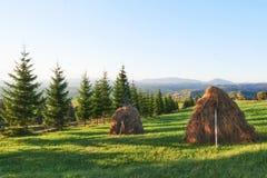 Höstack på solnedgång Äng stycke av grässlätt, en som speciellt används för hö Carpathian berg, Ukraine Fotografering för Bildbyråer