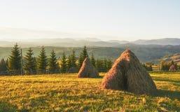 Höstack på solnedgång Äng stycke av grässlätt, en som speciellt används för hö Carpathian berg, Ukraine royaltyfria bilder