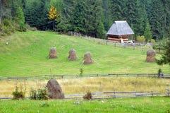 Höstackar i gården Fotografering för Bildbyråer