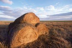 Höstackar i mellanvästern- fält Arkivfoton
