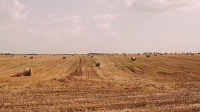 Höstackar ligger på fältet på solnedgången Lantligt f?lt i sommar med baler av h? lager videofilmer