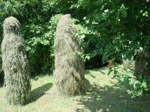 Höstackar mellan träden arkivfoto