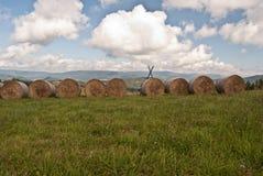 Höstackar på äng nära den Malatina byn i Slovakien Royaltyfri Fotografi