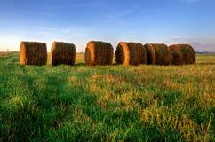 Höstackar på fältet - sommarlandskap Arkivfoton