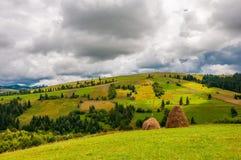 Höstackar på härligt sommarfält i Carpathian berg fotografering för bildbyråer
