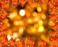 höstbakgrund Royaltyfri Foto