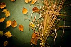 höstbakgrund Royaltyfria Foton