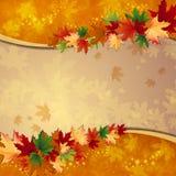 Höstbakgrund Royaltyfri Bild