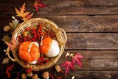 Höstbakgrund med det sida- och pumpa-, tacksägelse- och halloween kortet Fotografering för Bildbyråer