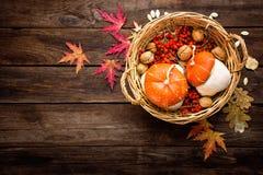 Höstbakgrund med det sida- och pumpa-, tacksägelse- och halloween kortet Royaltyfri Fotografi