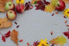 Höstbakgrund med ettträd för texten Arkivfoto