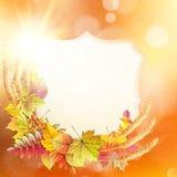 Höstbakgrund med färgrika leaves 10 eps vektor illustrationer
