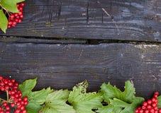 Höstbakgrund med plank och bär av viburnumen Arkivfoton