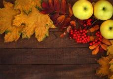 Höstbakgrundsäpplen och gulingsidor på träbakgrund med kopieringsutrymme royaltyfri fotografi