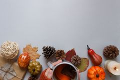 höstbakgrundscloseupen colors orange red för murgrönaleaf Händer som rymmer kopp te, höstgarnering på grå bakgrund Arkivbilder
