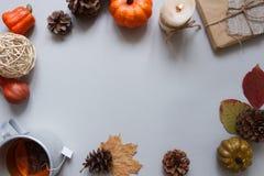 höstbakgrundscloseupen colors orange red för murgrönaleaf Kopp te och höstgarnering på grå bakgrund kopiera avstånd Fotografering för Bildbyråer