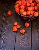 höstbakgrundscloseupen colors orange red för murgrönaleaf Ljusa orange physalisbär på en brun träig bakgrund Bakgrund för den hös royaltyfria bilder
