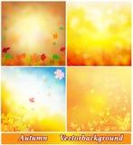Höstbakgrundssamling Royaltyfria Bilder