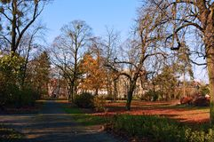 Höstbana i en parkera royaltyfria bilder