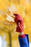 Höstbegrepp med guld- leaves Fotografering för Bildbyråer
