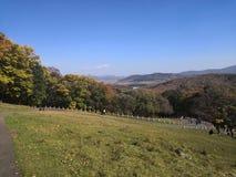 Höstberg, berg och träd ser gula och gröna royaltyfria bilder