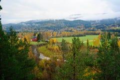 Höstberg och skogar i Telemark, Norge Arkivbild
