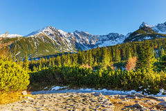 Höstberglandskap, Tatras berg royaltyfria foton